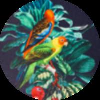 Park Lane Swimtrunk Flower Print Navy Parrot