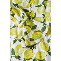 Fabienne Chapot Outshine Dress Lime White/Pistache