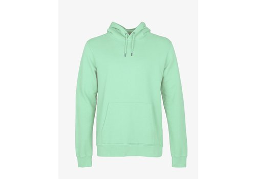Colorful Standard Colorful Standard Classic Organic Hood Faded Mint