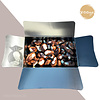800gr chocolade zeevruchten verpakt in ballotin