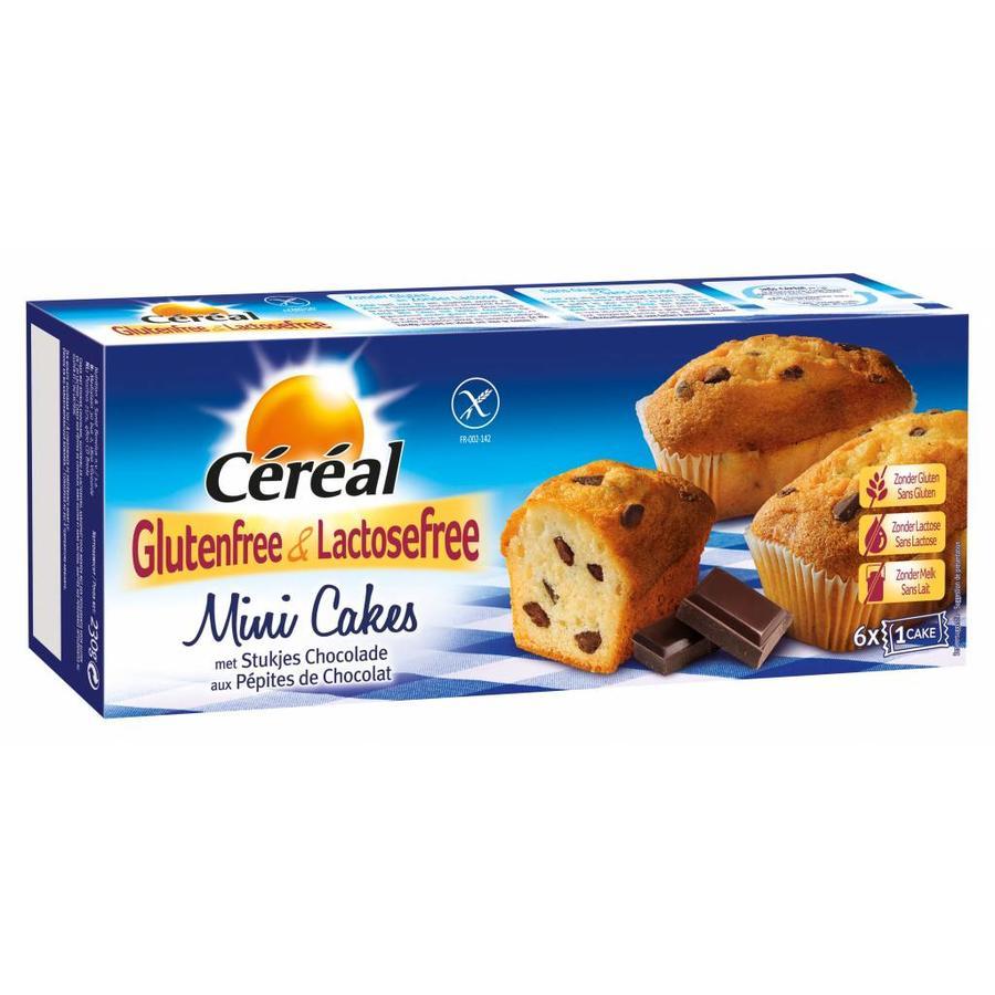 Mini Cakejes met Stukjes Chocolade 6 Stuks
