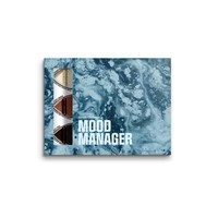 Mood Manager (THT 12-19)
