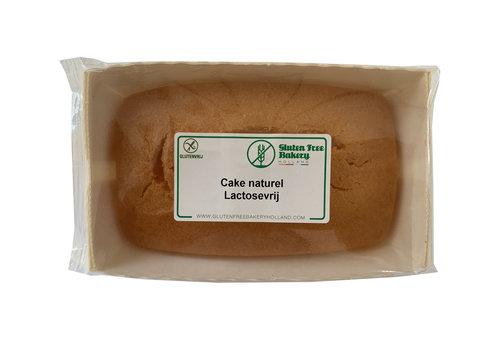 Gluten Free Bakery Cake Naturel