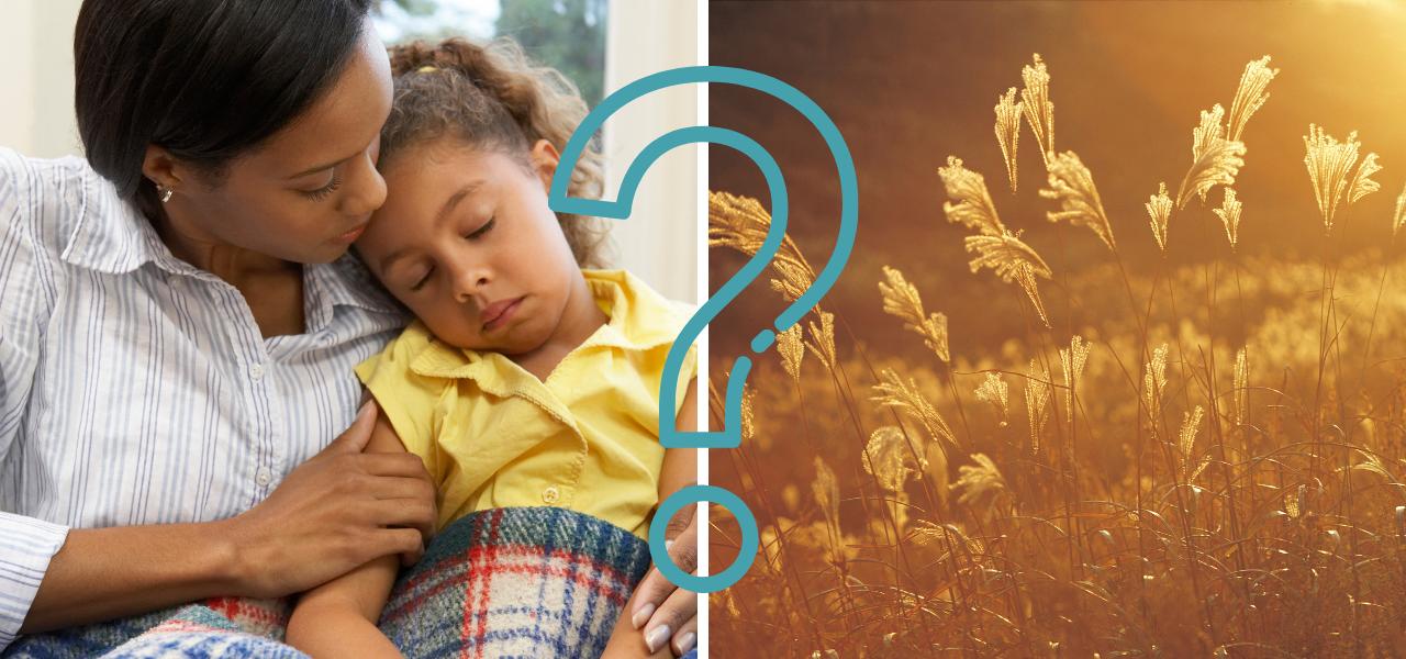 Wat is het verschil tussen een glutenintolerantie en een tarwe-allergie?