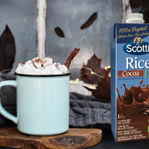 Recept: Warme chocolademelk
