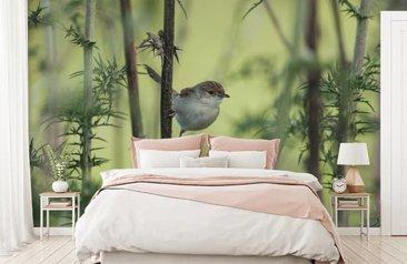 Natuur Behang Slaapkamer : Fotobehang natuur online kopen fotobehang