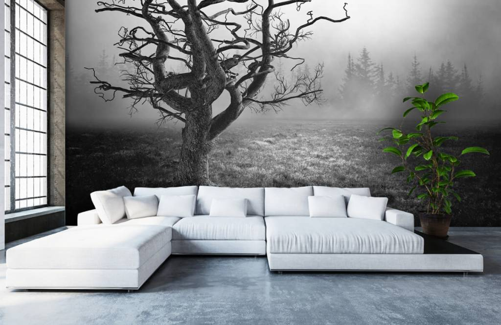 Sierlijke boom in zwart-wit