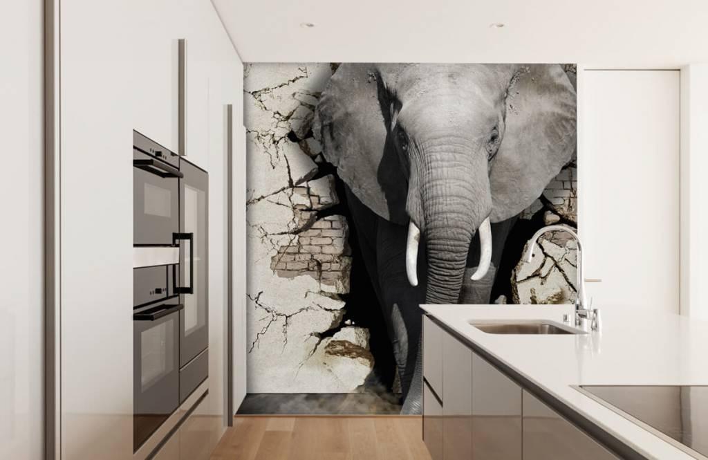 3D Olifant uit de muur op fotobehang