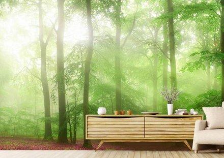 Groen bos panorama