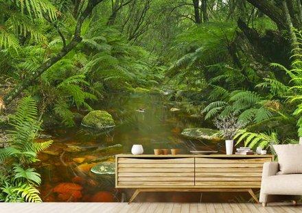 Riviertje in het regenwoud