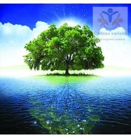 De Groene Linde Auraspray Innerlijke rust 50 ml