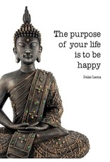 Zintenz The purpose of your life is to be happy briefkaart