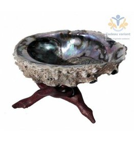 Abalone schelp met standaard
