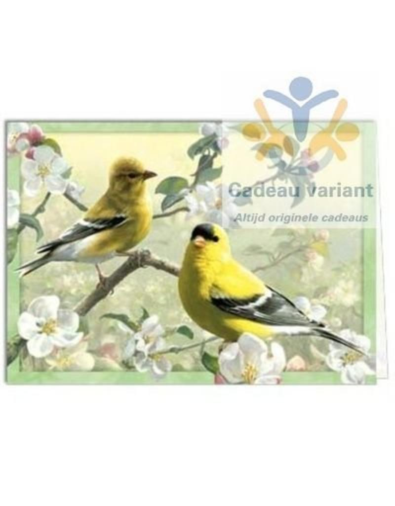Tree free cards Wenskaart Orchard goldfinch