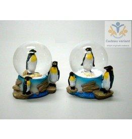 Pinguïns waterbol