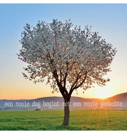 Zintenz Wenskaart Een mooie dag begint met een mooie gedachte