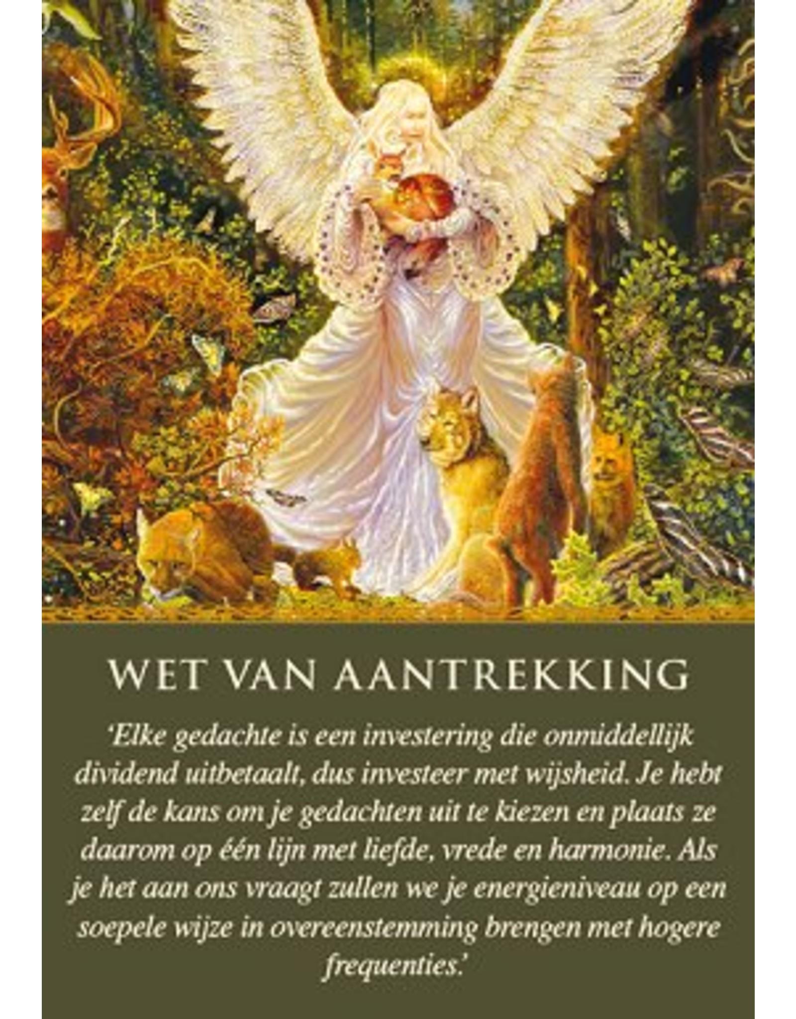 Dagelijkse leiding van je engelen