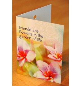 Zintenz Geschenkkaart Friends