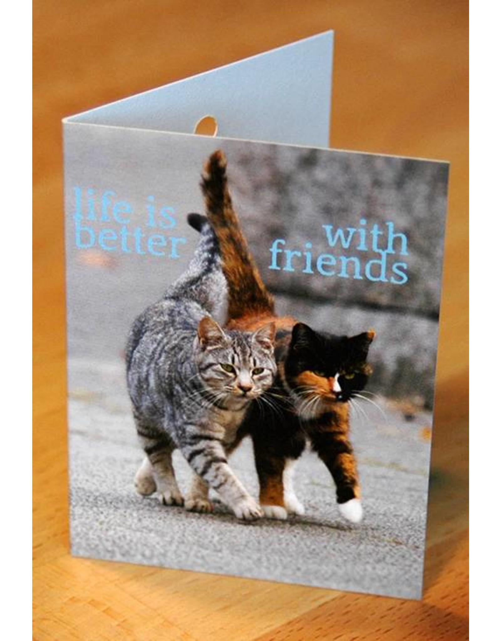 Zintenz Geschenkkaart life is better with friends