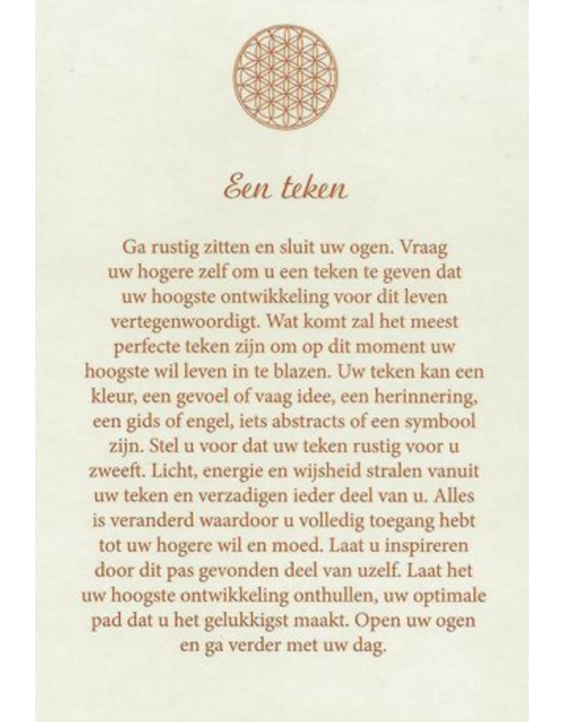 Deltas De wijsheid van de levensbloem