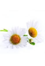 De Groene Linde Kamille rooms 10% etherische olie 10 ml