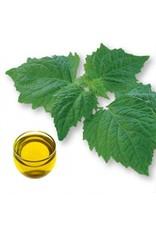 De Groene Linde Patchouli etherische olie 10 ml