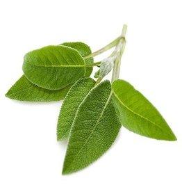 De Groene Linde Salie etherische olie 10 ml