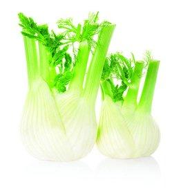 De Groene Linde Venkel etherische olie 10 ml