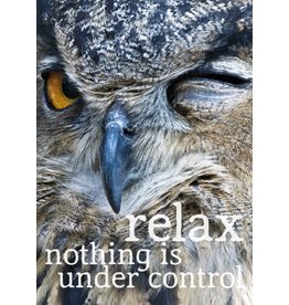 Zintenz Relax nothing is under control briefkaart
