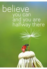 Zintenz Believe you can and you are halfway there briefkaart