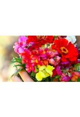Volatile Bloemenpracht aromamengsel 10 ml