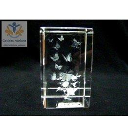 Vlinder glasblok