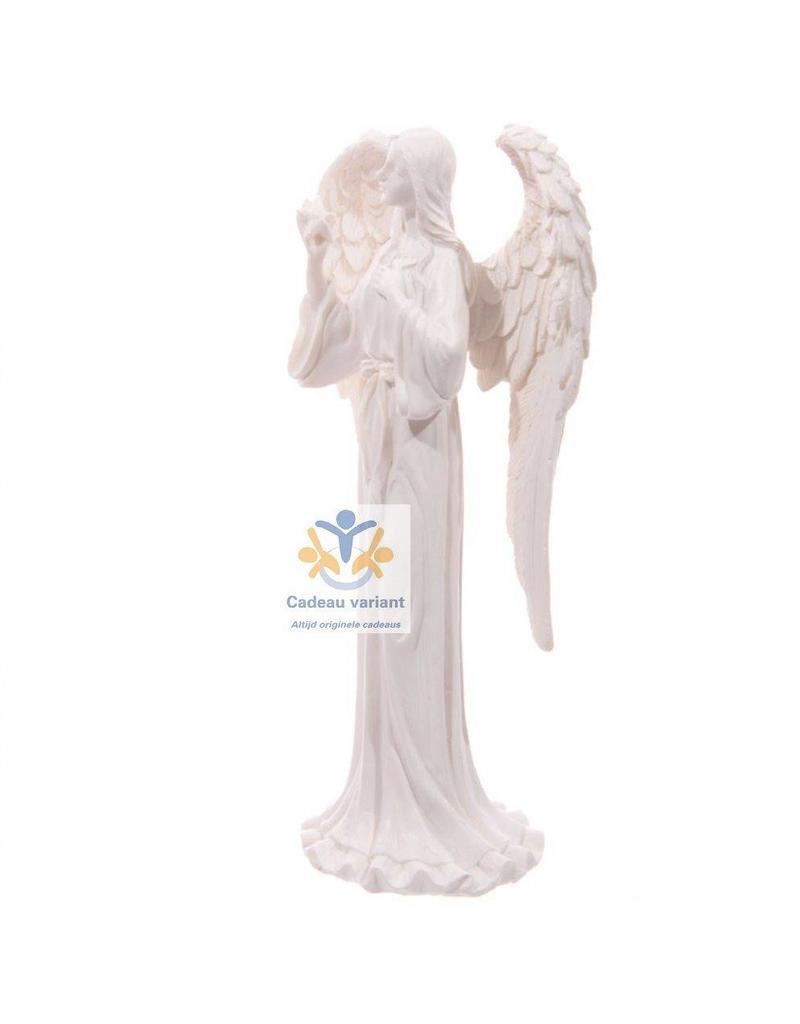 Engel beeld ster wit
