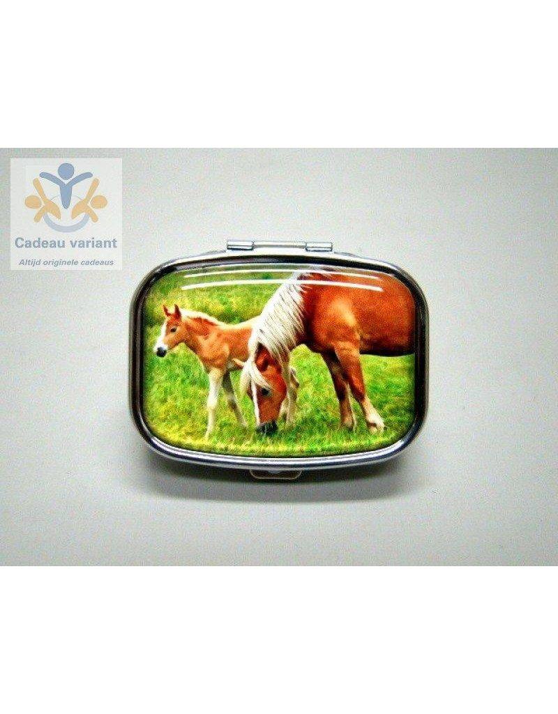 Paard en veulen pillendoosje 2 vakken