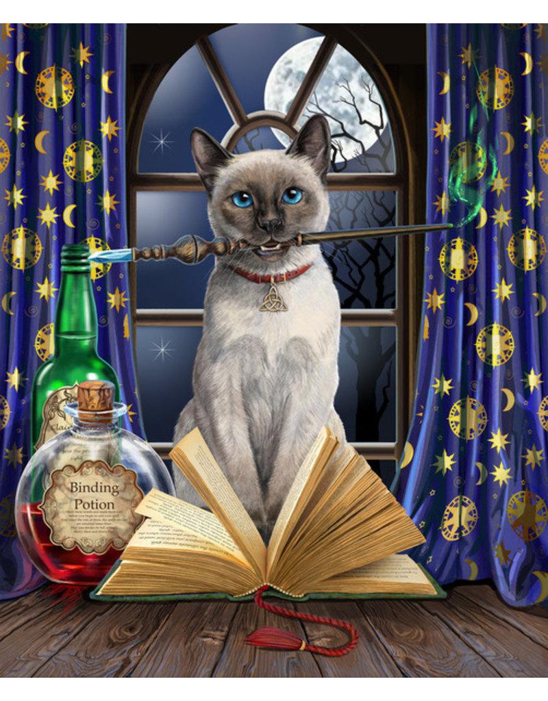 Lisa Parker Kat hocus pocus mok