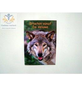 Wolf Veluwe briefkaart