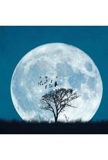 Zintenz Wenskaart volle maan