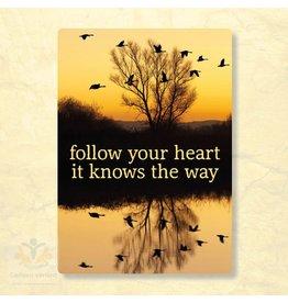 Zintenz Follow your heart briefkaart