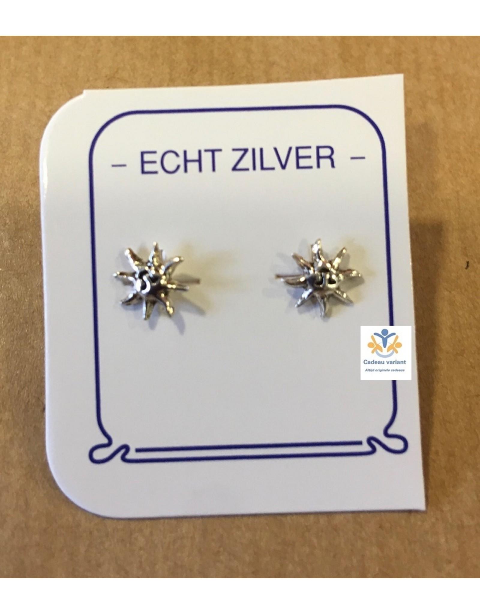 Zon oorbellen zilver (oorsteker)