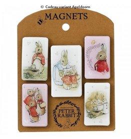 Peter Rabbit magneten set