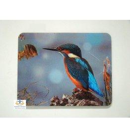 Ijsvogel 3D magneet