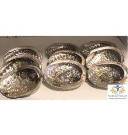 Abalone schelp klein