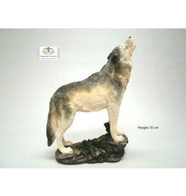 Wolf huilend beeld groot