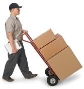 Worldwide shipments