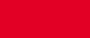 VYC logo