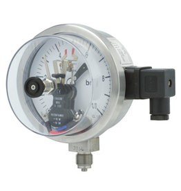 Pressure Gauge P501 all SS, dome style