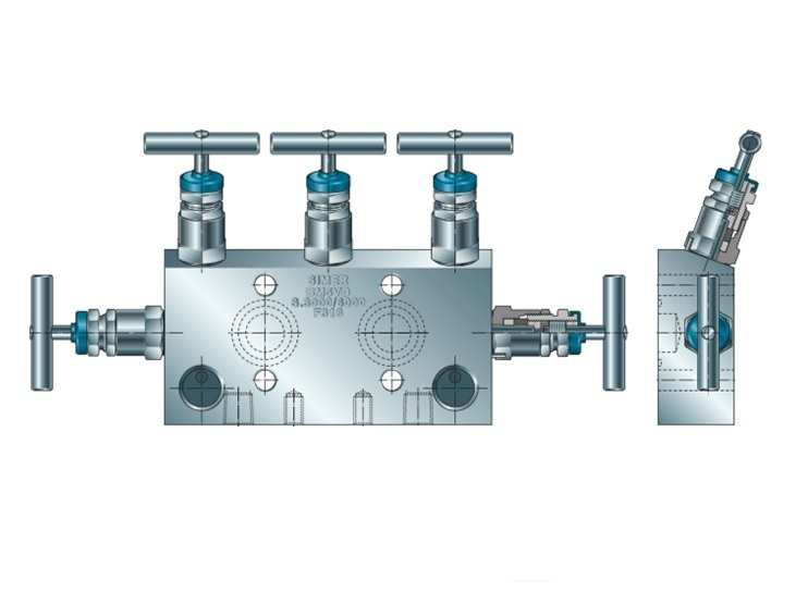 5-Way Manifold series BM5V