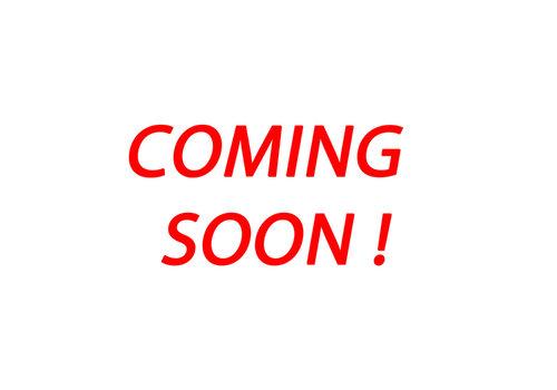 Pijnappel Gebruikte Pijnappel Elektrische kieper 300x170cm 3500kg