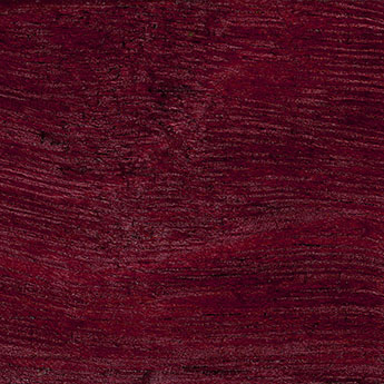 Purplehearth texture wood sample