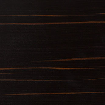 Ebony texture wood sample